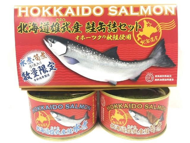 北海道雄武産 鮭缶詰2缶 セット